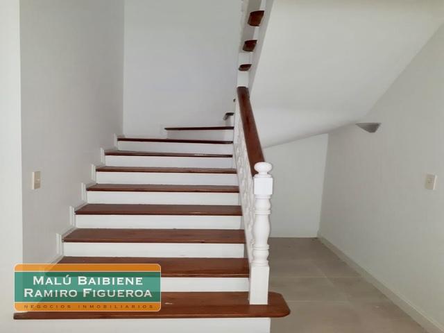 Galapagos REF 1003