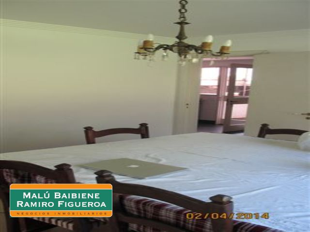 Tortugas Chico REF 0106
