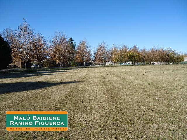 Altos de Manzanares REF 1503