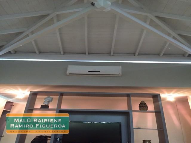 Tortugas Chico REF 0156